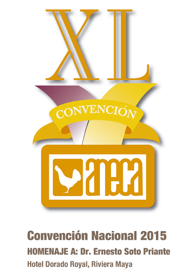 logo XL CONVENCION ANECA