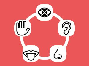 Captar la atención con los 5 sentidos
